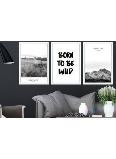 Çerçeve Home  Born To Be Wild Beyaz Çerçeve Tablo Seti Beyaz